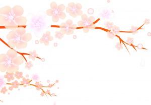 flower1601